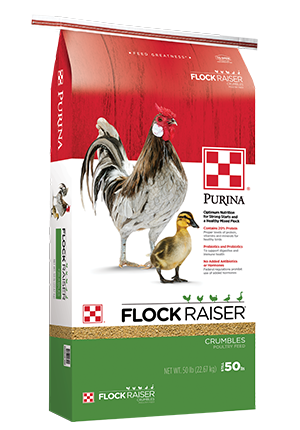Purina® Flock Raiser® image